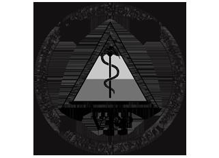 Logo VFP